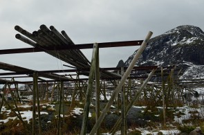 Cod racks in Lofoten